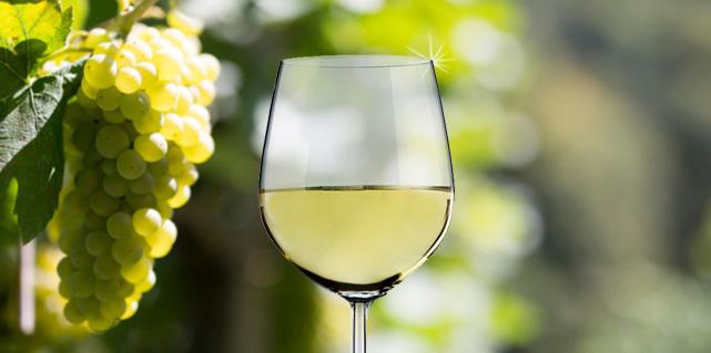 Weißweine bei Vinum Nobile.de