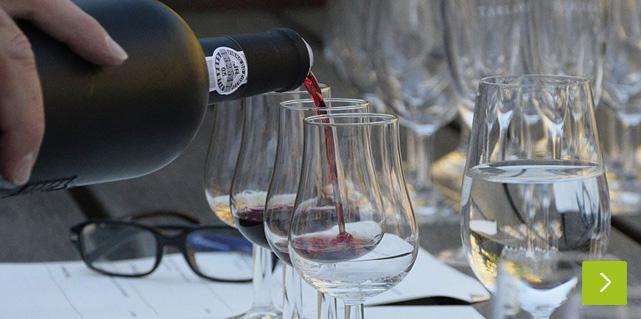 Weintasting bei Vinum Nobile