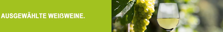 Ausgewählte Weißweine, von preiswert bis exklusiv