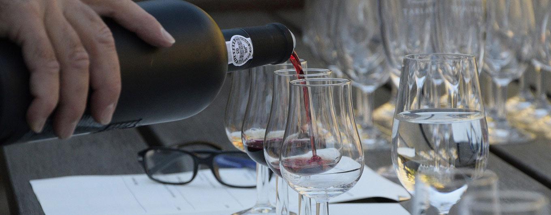 Wein Degustationen / Weinproben bei Vinum Nobile